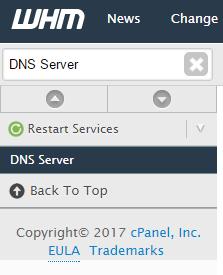 cpanel dns server