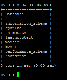 show mysql databases command
